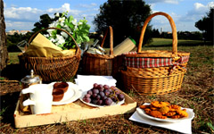 picnic in florence offer